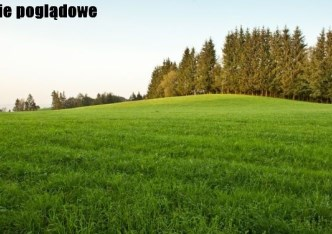 działka na sprzedaż - Pawłowice